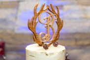 Aspen and Antler Cake